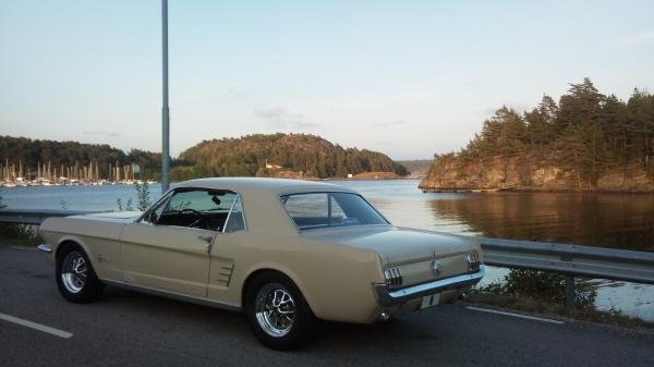 Showcase cover image for saharamustang's 1966 Ford Mustang