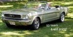 a109598's 1966 Ford Mustang