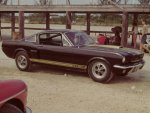 1966_Shelby_MustangGT350H1.jpg