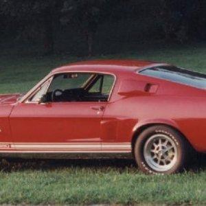 Dennis's '68 Shelby Cobra GT350 | Vintage Mustang Forums