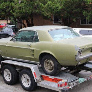1967 mustang on trailer